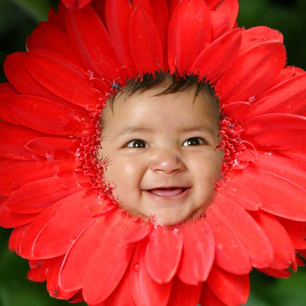Baby in a Flower